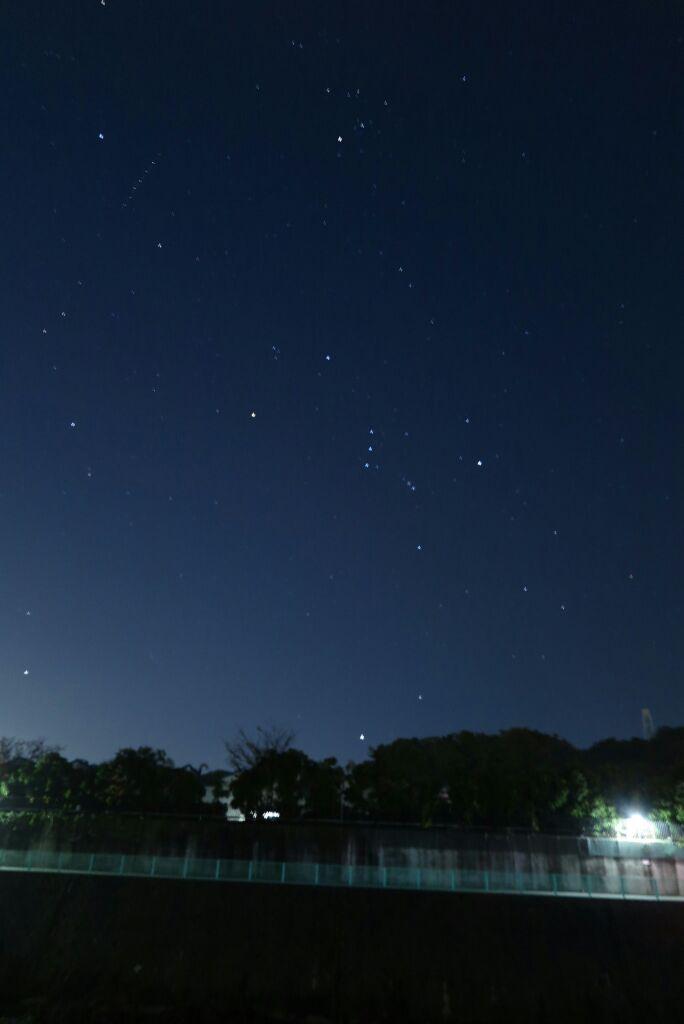 星がきれいでした